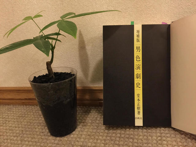 harukogomo1.jpg
